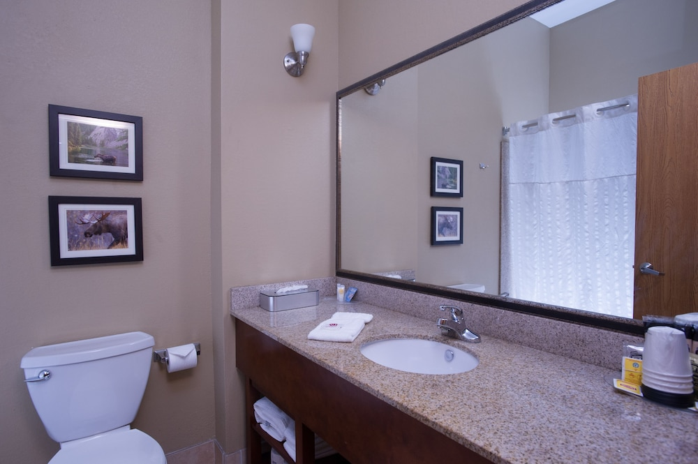 Bathroom, Comfort Suites Anchorage International Airport