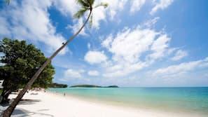 海灘、白沙、躺椅、太陽傘