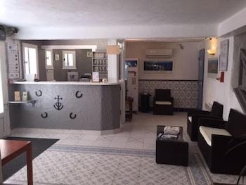 Hôtel Les Palmiers en Camargue, Arles - Room Prices   Reviews ... d45ad8ab261