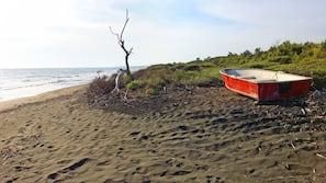 靠近海滩、黑沙