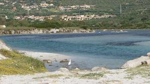 Una spiaggia nelle vicinanze, motonautica, pesca