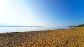 On the beach, snorkelling, waterskiing, windsurfing