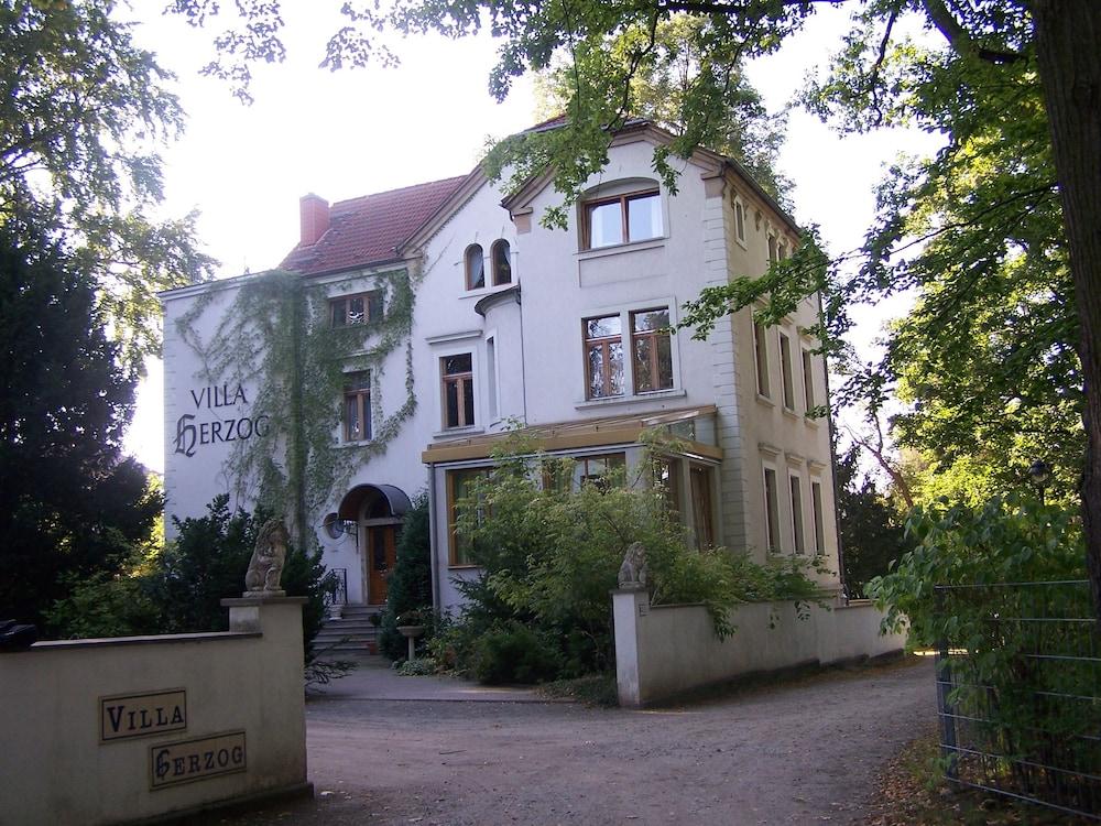Hotel Villa Herzog In Dresden