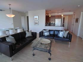 Chicago Downtown Condo - Michigan Ave Suite ID #14-15