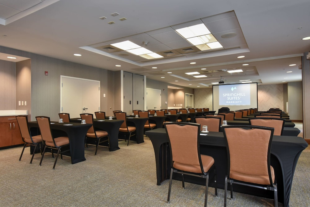 Meeting Facility, SpringHill Suites by Marriott Columbia Downtown/The Vista