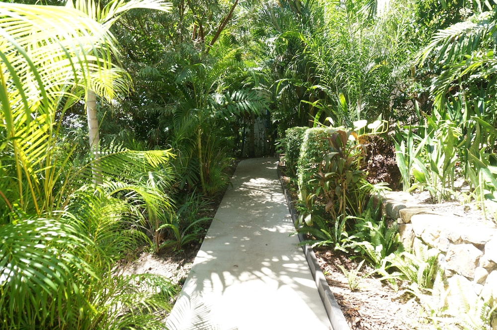 Garden, Whitsunday Terraces Hotel Airlie Beach