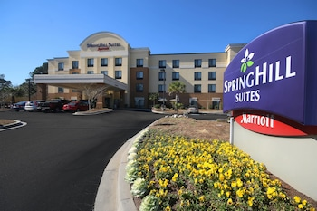 SpringHill Suites by Marriott Charleston N./Ashley Phosphate