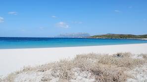 Servicio gratuito de transporte a la playa y toallas de playa