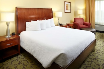 Hilton Garden Inn Dallas-Arlington