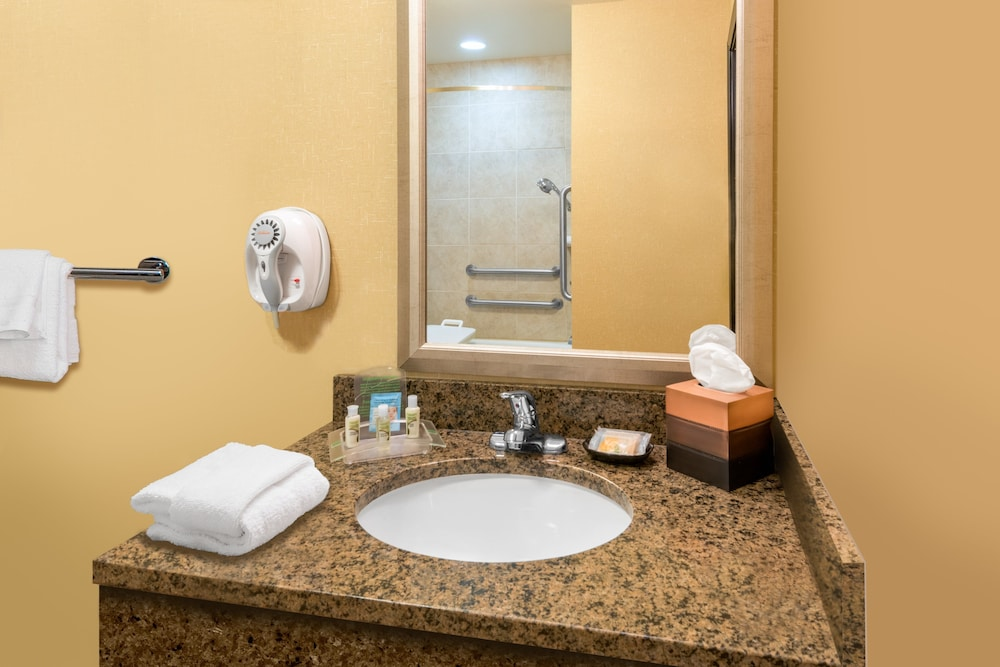Bathroom, Holiday Inn and Suites Grand Junction, an IHG Hotel