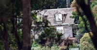 Binna Burra Lodge (31 of 58)