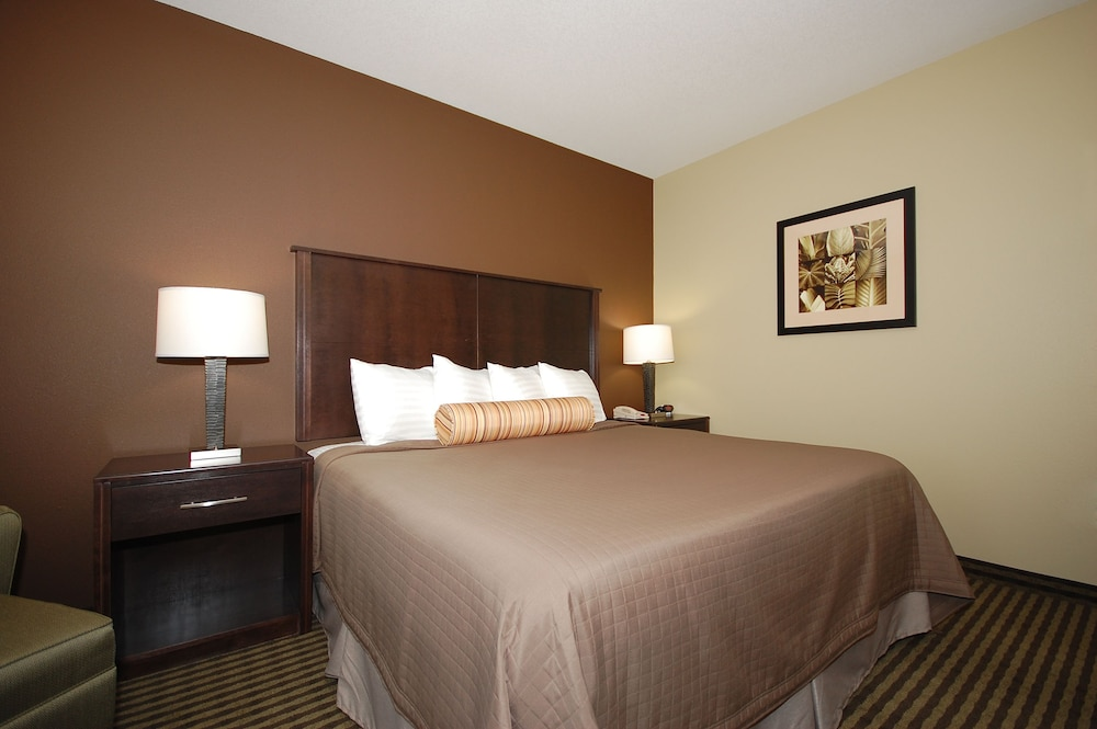 Room, Best Western Plus Parkersville Inn & Suites