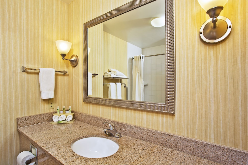 Bathroom, Holiday Inn Express Hotel & Suites ANDERSON NORTH