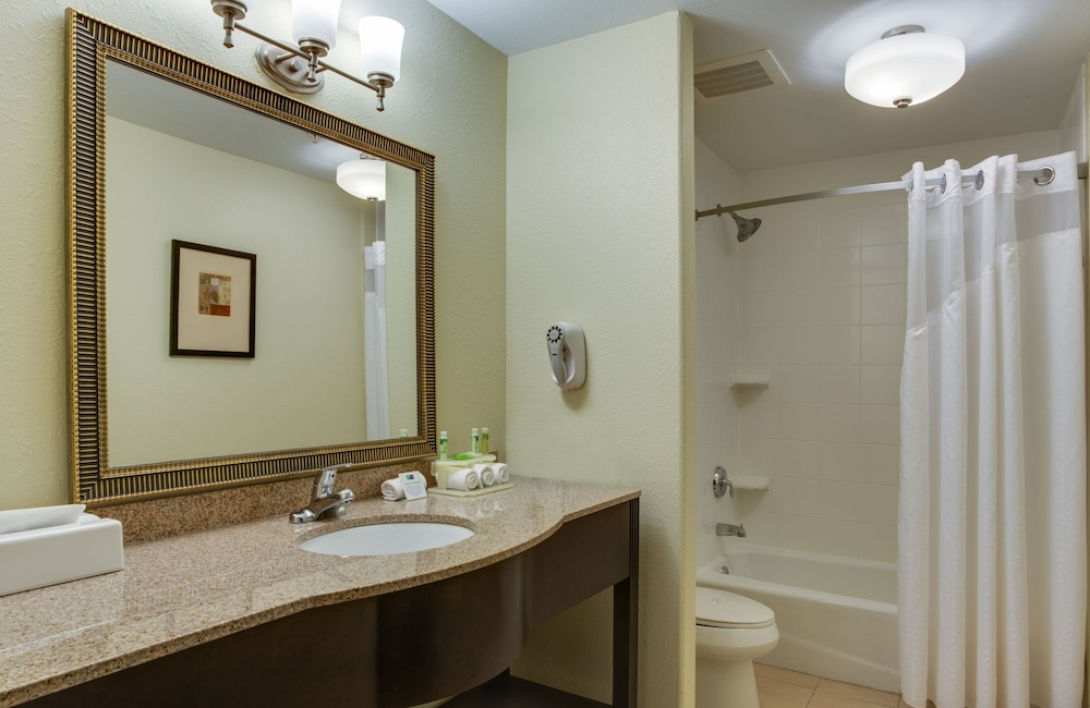 Bathroom, Holiday Inn Express and Suites Moultrie, an IHG Hotel