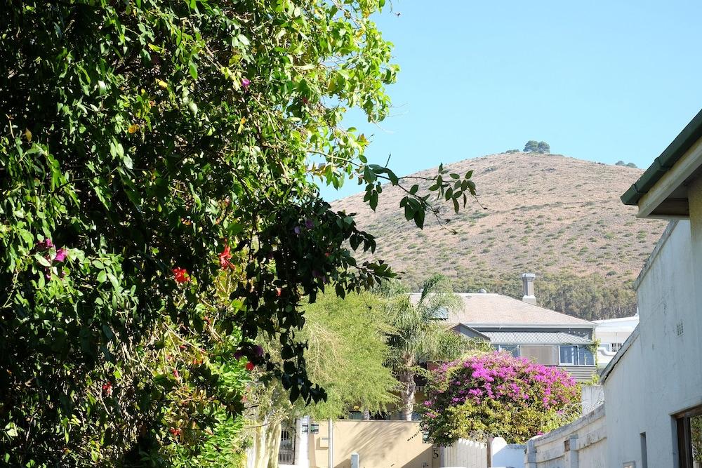 Sensational Jambo Guest House Kapstadt Hotelbewertungen 2019 Expedia De Home Interior And Landscaping Ologienasavecom