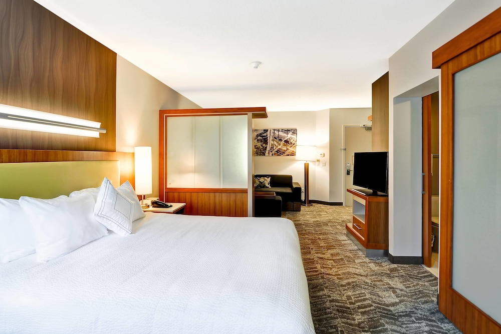 Room, SpringHill Suites by Marriott Columbia