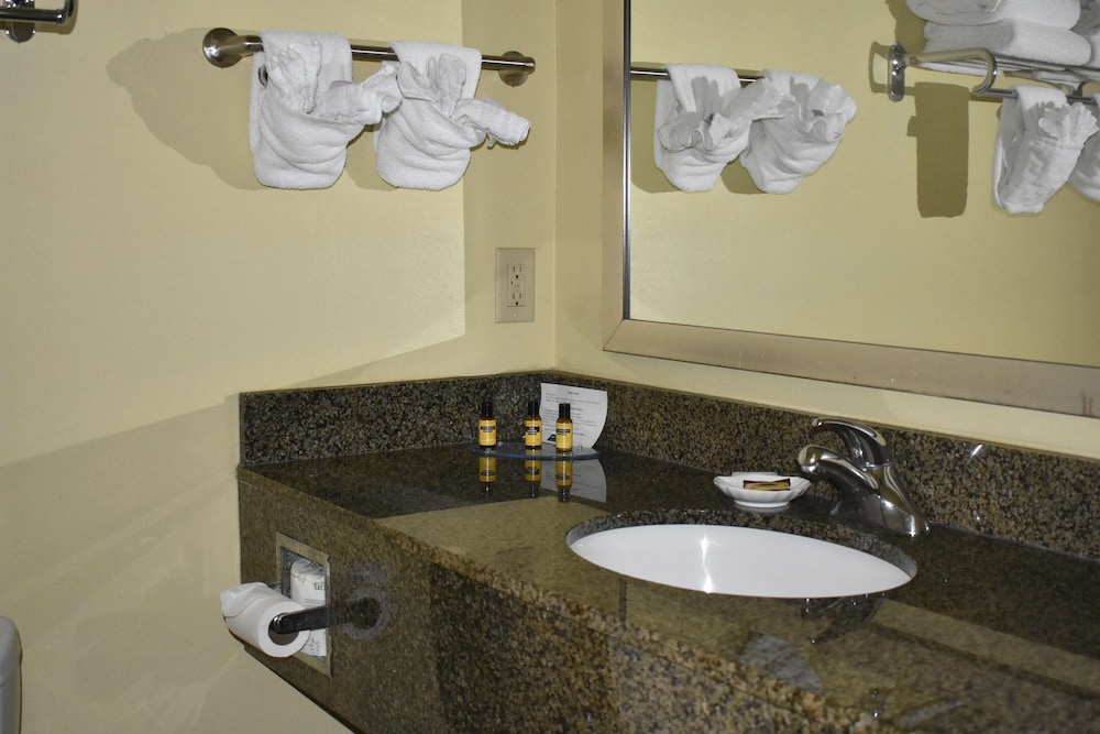 Bathroom, Best Western Plus Brunswick Inn & Suites