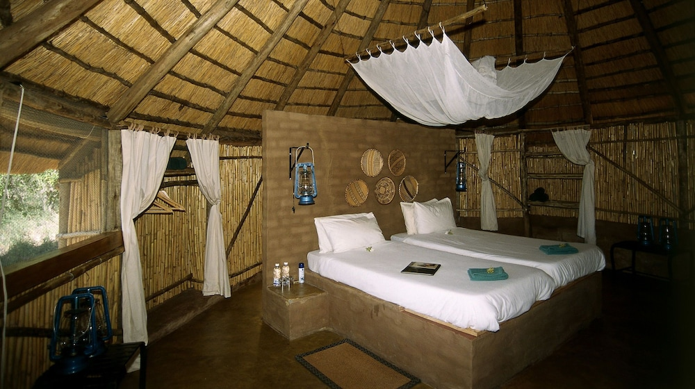 Room, Umlani Bushcamp - Lodge