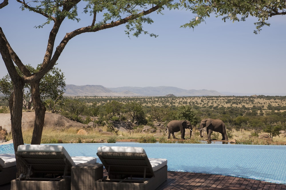 Outdoor Pool, Four Seasons Safari Lodge Serengeti