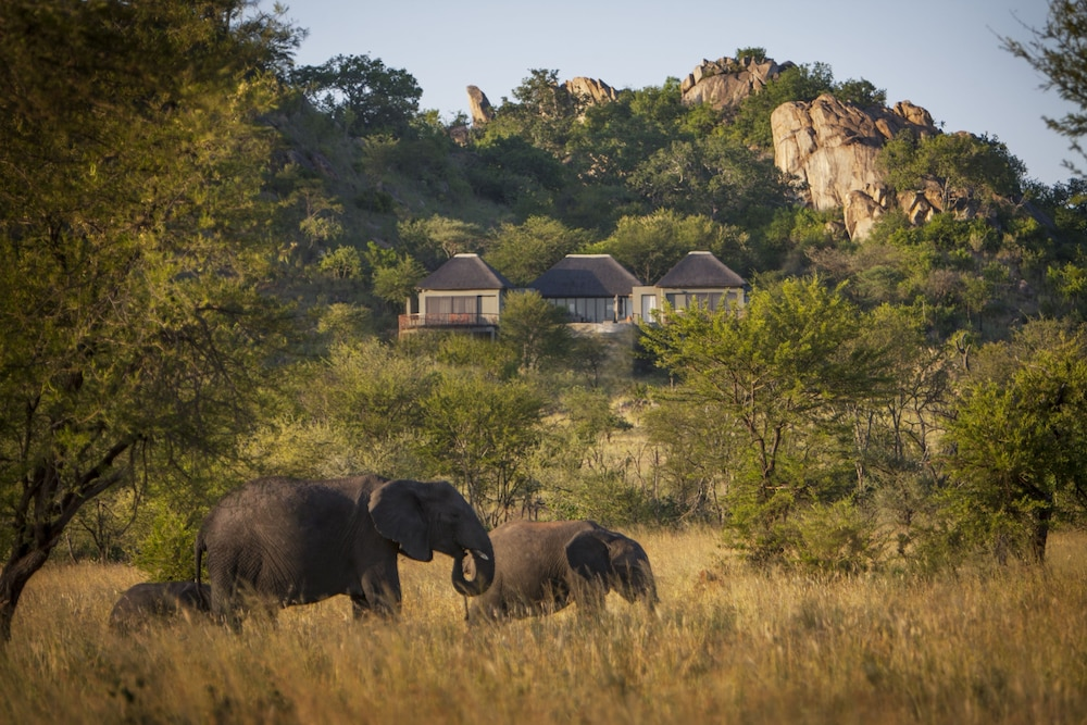 View from Room, Four Seasons Safari Lodge Serengeti