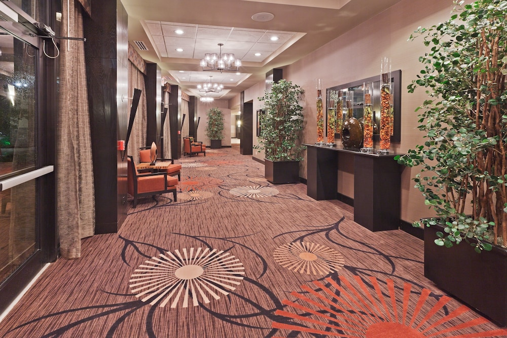 Meeting Facility, Holiday Inn Hotel & Suites Tulsa South