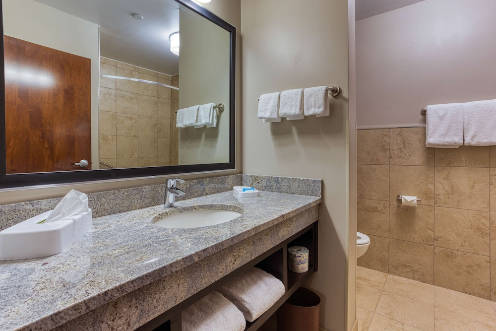 Bathroom, Drury Inn & Suites Cincinnati Northeast Mason