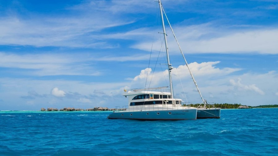 Maldives Dive Loabi