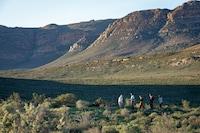 Cederberg Ridge Wilderness Lodge (37 of 49)