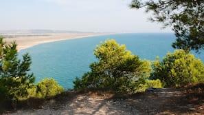 Beach nearby, fishing