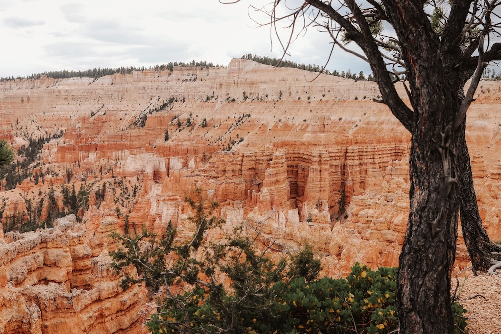 Point of Interest, The Cottages At Bryce Canyon