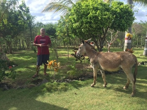 A Nice Spanish Ranch 5 Minutes From Sanate River and 20 Minutes From Punta Cana