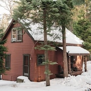 Cozy Cabin Retreat and Dogs Welcome