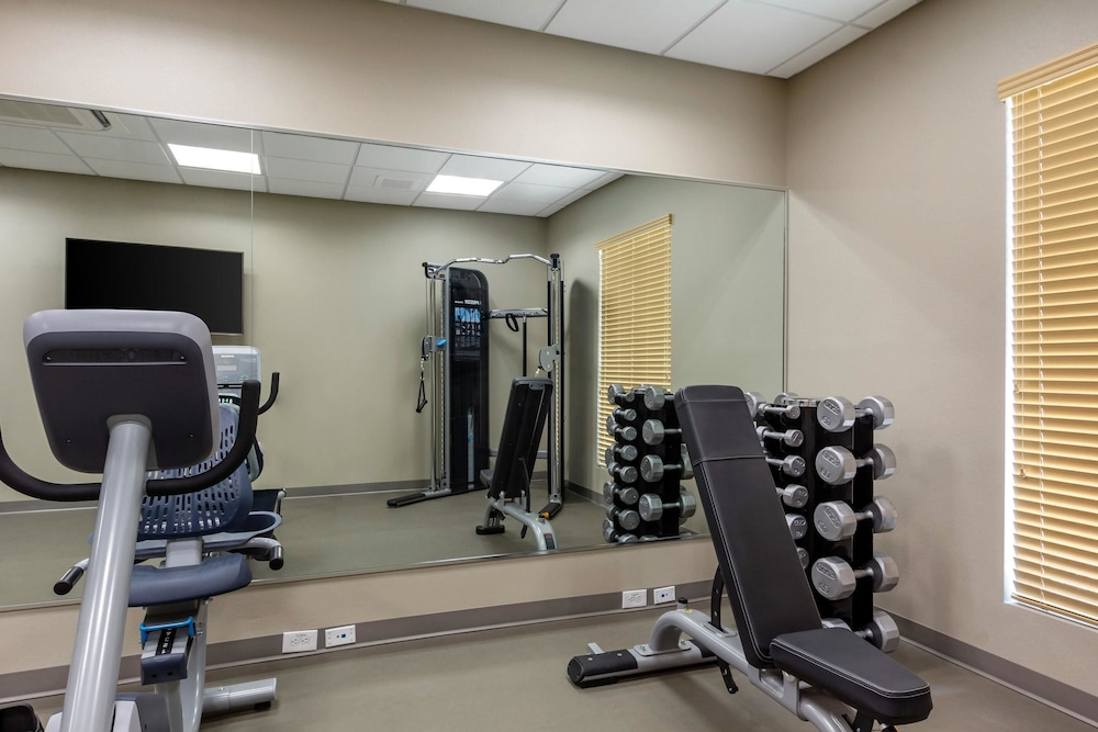 Fitness Facility, Sleep Inn & Suites Tampa South