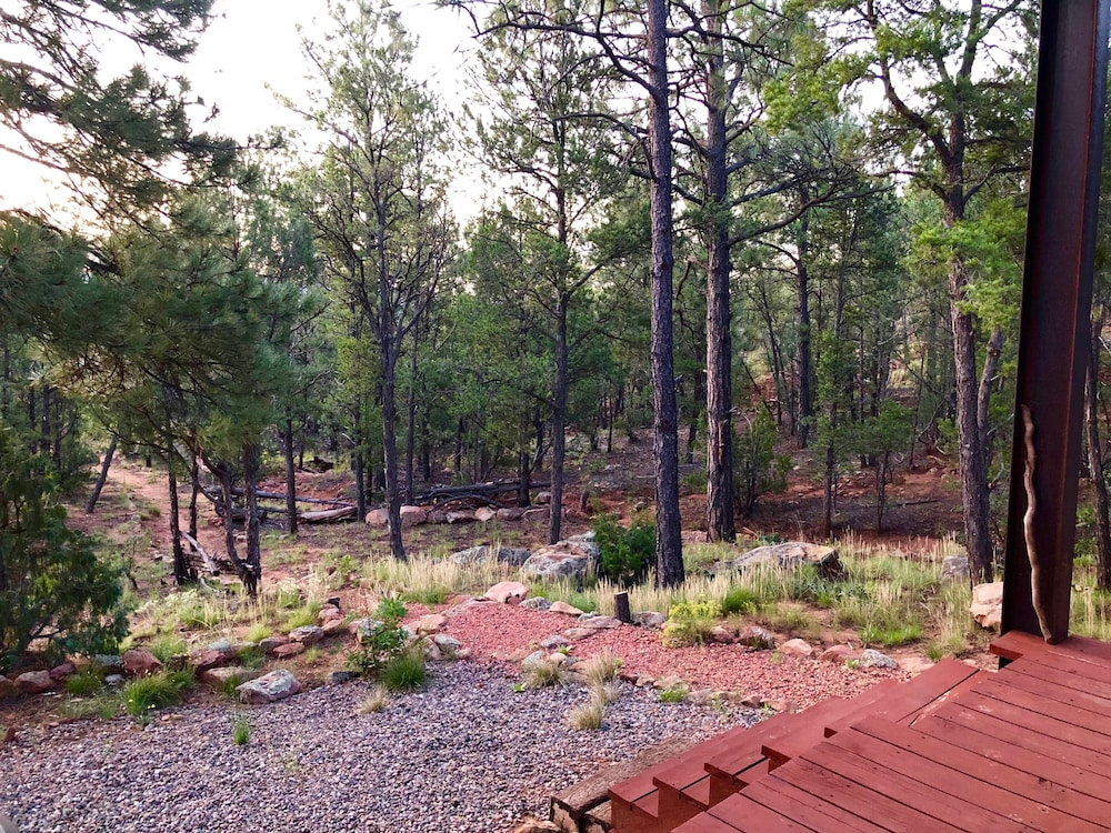 Property Grounds, Modern Cabin In The Woods - Family And Pets Friendly