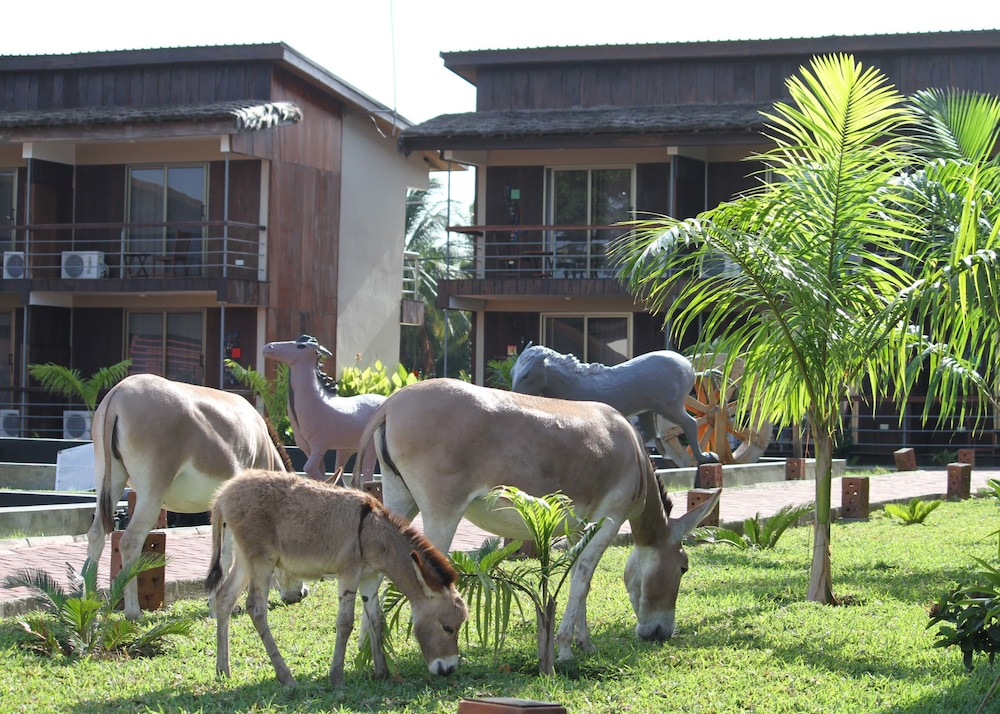 Property Grounds, Aqua Safari Resort