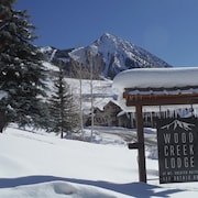 Highly Rated 1 BR Condo - Walk to Lifts, Hot Tub, Sauna, Ski Bus Stops Here!