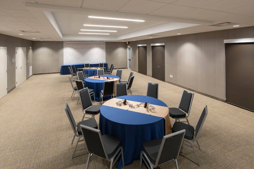 Meeting Facility, SpringHill Suites by Marriott Tampa Suncoast Parkway