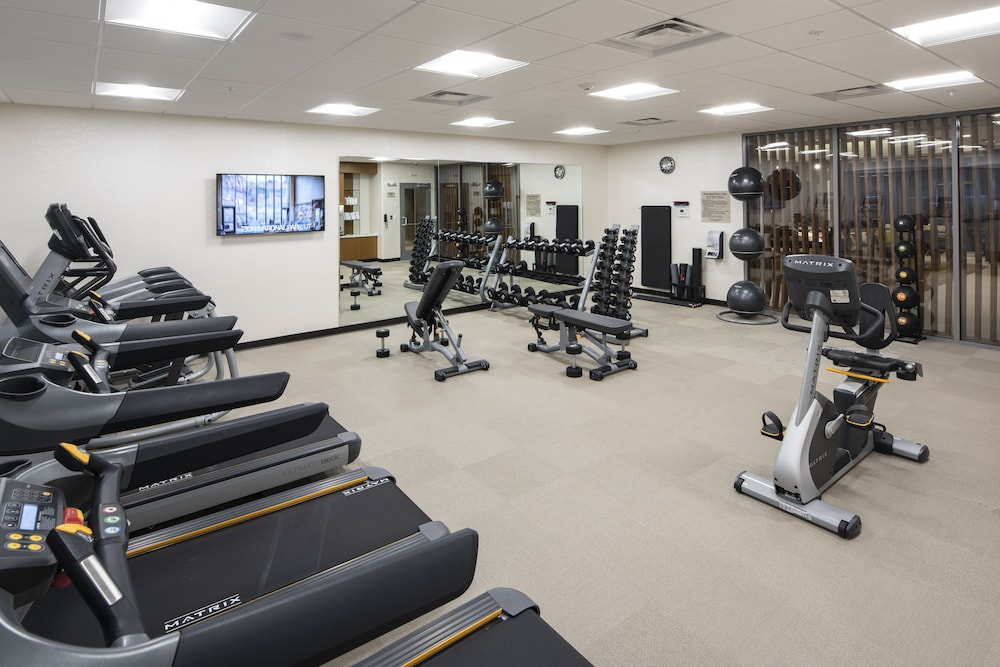 Gym, SpringHill Suites by Marriott Tampa Suncoast Parkway