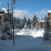 1BR Executive Suite in Solitude Village - 300 Steps to Chairlifts - Upgraded