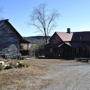 One of a Kind Historic Farmhouse 10 Minutes From Tryon Equestrian. Speaks French