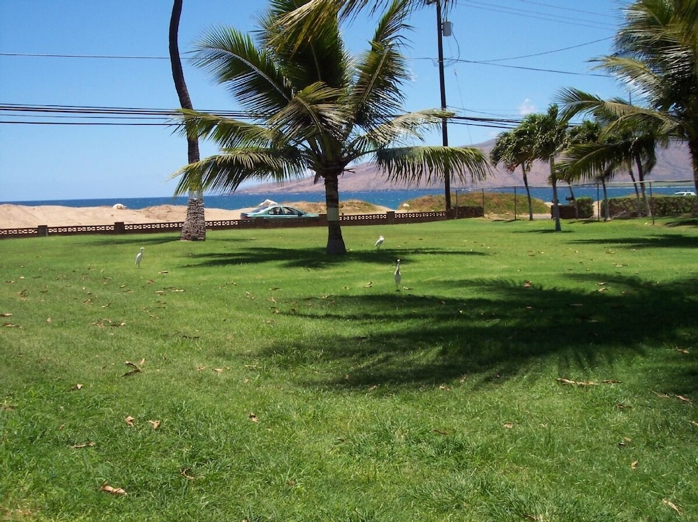 Property Grounds, Kihei - Tropical Cottage Across From the Beach - Permit # Stkm 2015/0003