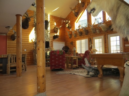 This Cabin Is The Most Unique , Life Size Mounted Animals,man Cave Supreme