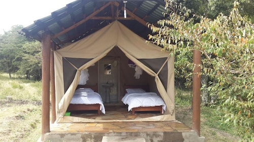 Hodi Hodi Ruah Bush Camp
