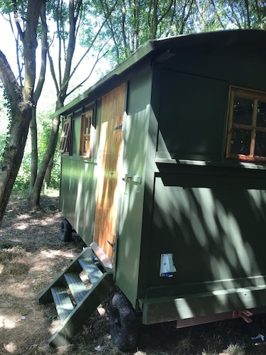 The Shepherd's Hut