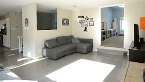 TV, fireplace, video-game console, toys