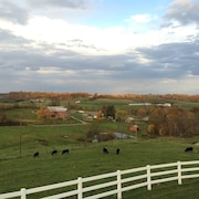 Breathtaking View, 2 Kitchens, Nature Trails, Working Farm