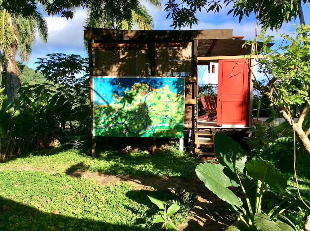 Lodge Dans Jardin Tropical Avec Piscine Privee, Samaná ...