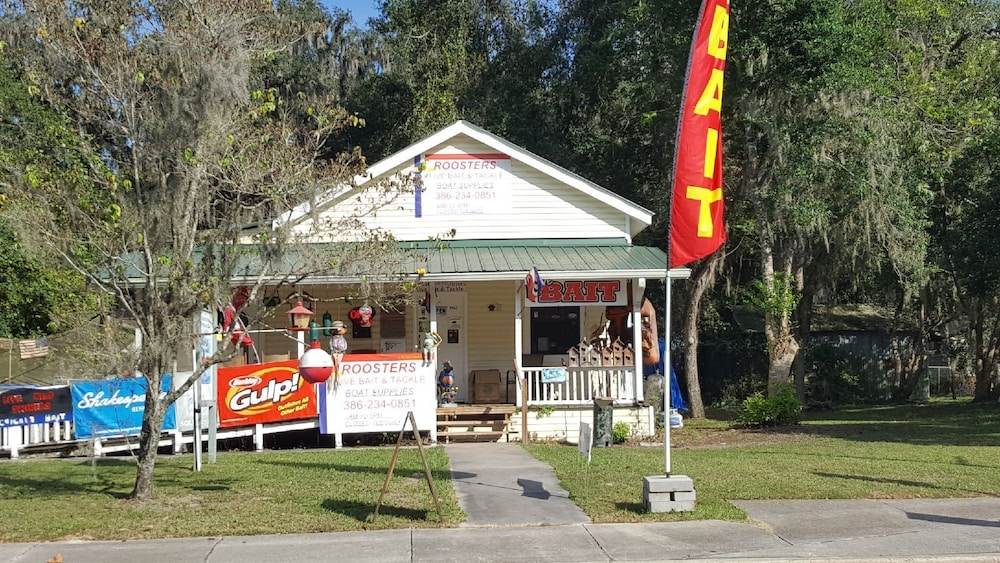 Exterior, Suwannee River Oasis! Waterfront Cabin in Paradise White Springs, Florida