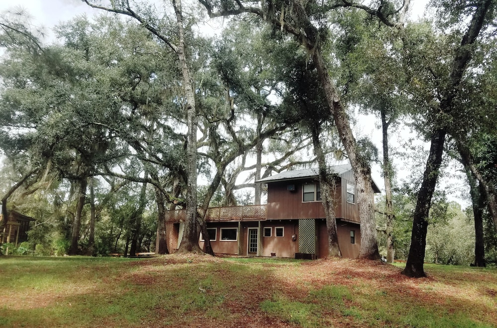 Featured Image, Suwannee River Oasis! Waterfront Cabin in Paradise White Springs, Florida