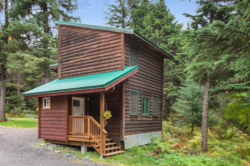 NEW Listing! Quaint Cabin With Modern Amenities Located Close to ski Slopes!